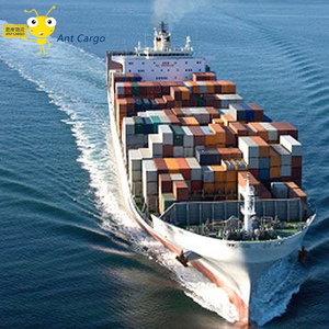 Professional FBA freight forwarder amazon to usa