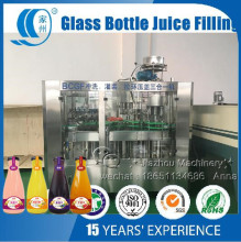 Glass Bottle Fruit Pulp Basil Seed Juice Coconut Water Filling Machine