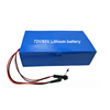 OEM 24/36/48/72V lithium ion polymer battery pack with factory price 30ah 40ah 50a 60ah 100ah