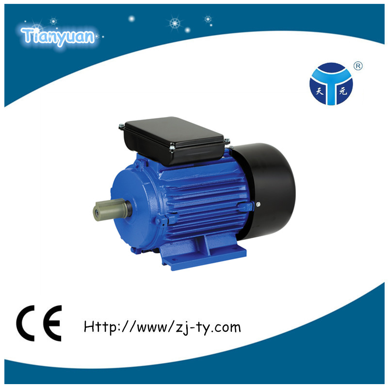 High performance YL series Dual Capacitor Asynchronous Motor