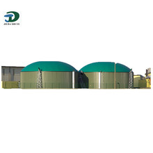 Trade Assurance Supplier Biogas Filter, Biogas Equipment, Biogas Plant