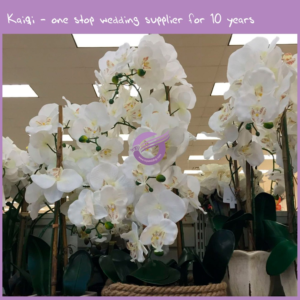 Artificial orchid artificial orchid suppliers and manufacturers artificial orchid artificial orchid suppliers and manufacturers at alibaba dhlflorist Choice Image