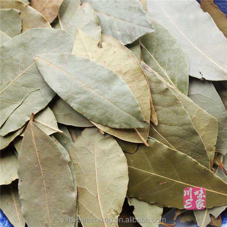 High Nutrition The best Seasoning and condiments dried bay leaves leaf price