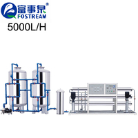 Fostream 5T Per Hour RO Filter System Pure Water Treatment Plant With Price