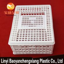 plastic baby chick cage pet carrier crate pigeon mesh cage