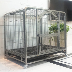 wholesale breeding large dog cages for pet cats or rabbits