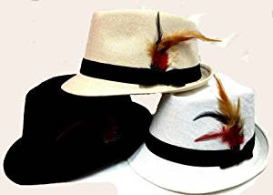 Ddi Fedora Hats With Feathers - Assorted Colors (Pack Of 24)