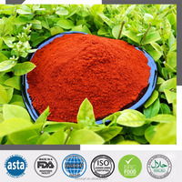 Hot Red Chili Powder