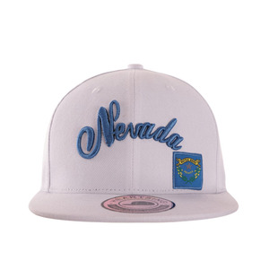 Custom private label Adult Size 3d embroidery logo white cotton fabric Snapback Cap