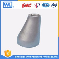 Pipe Fitting Titanium Reducer