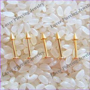Wholesale Gold Anodized Body Piercing Jewelry Unique Labret Studs [AP-012]