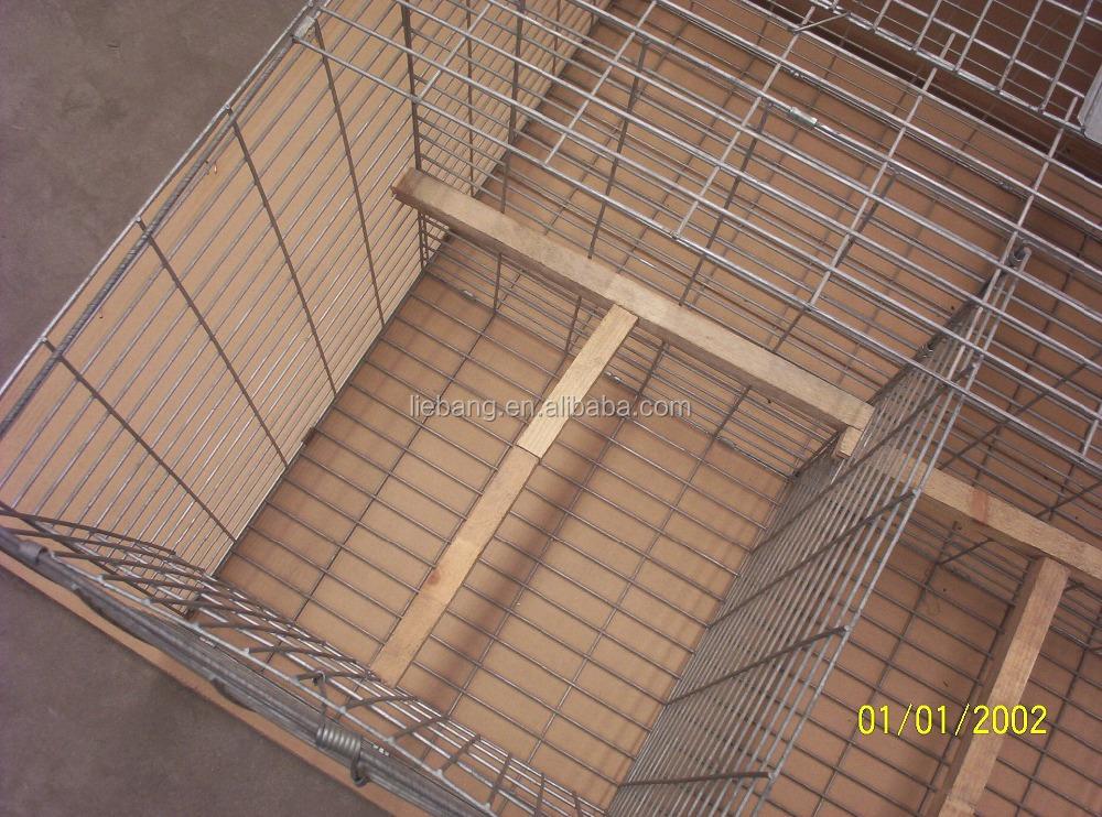 Humaine pliable pliable d 39 oiseaux vivants pi ge cage pour pigeon et corneille lutte - Piege a pigeon ...