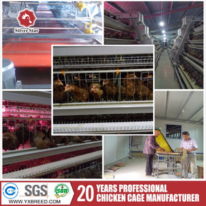 A type chicken cages 4 tier 160 layers design poultry battery cage customized broiler feeding system for Nigeria Kenya Africa