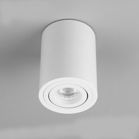 common corridor aluminium cylindrical Ceiling mounted lights surface mounted ceiling downlight