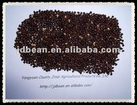 2012 Hot sale Glutinous Black broom corn millet