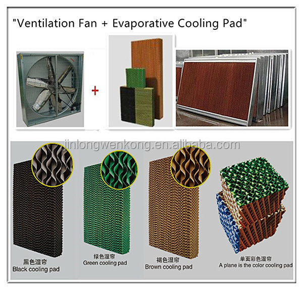 Jinlong Manufacturer Chicken House Evaporative Air Cooler/poultry ...