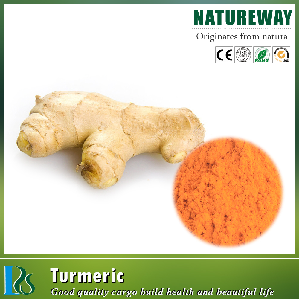 High quality curcumin extract 95% organic turmeric curcumin powder