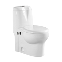 Alibaba China High Quality Combination Toilet And Bidet In One