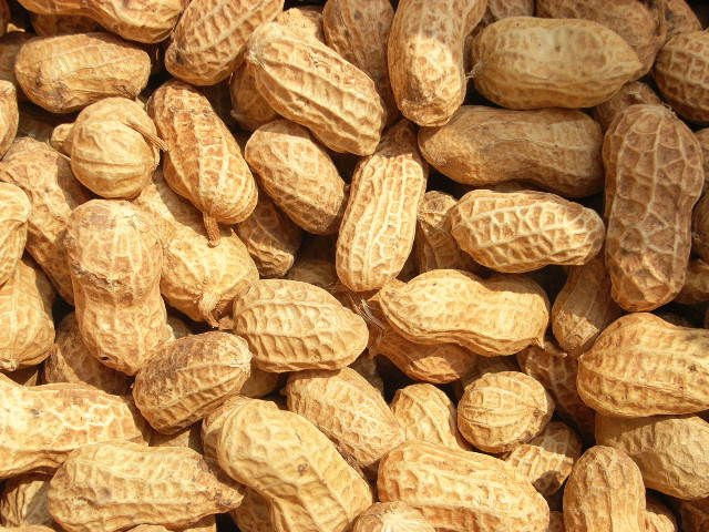 2014 new crop best quality wholesale blanched peanuts price