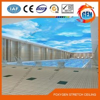Beautiful Foxygen Brand supply pvc decorative celling film