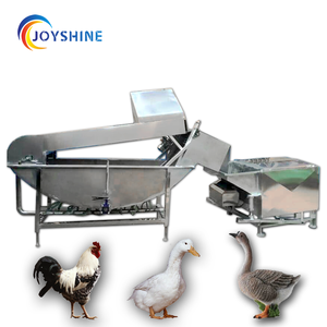 China Automatic Industrial Defeathering Chicken Poultry Scalding Machine