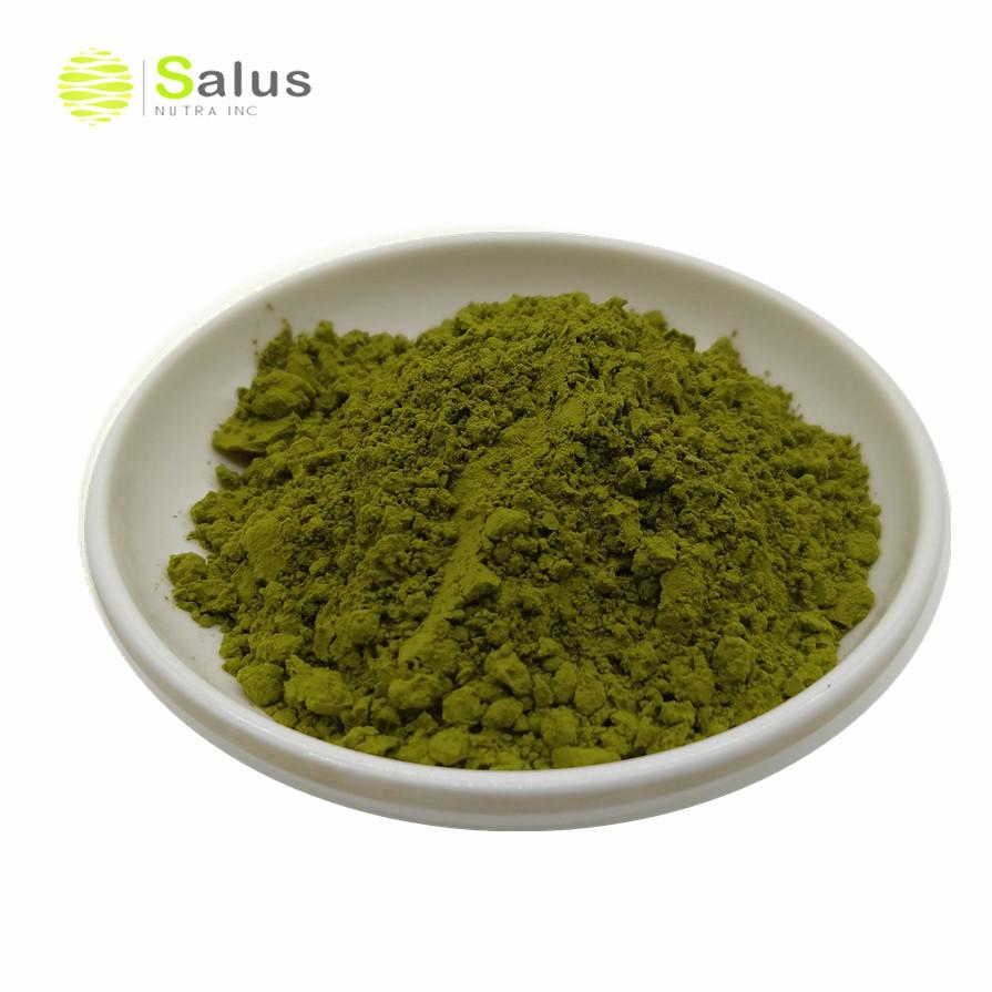 Wholesale Price Organic Match Tea Powder - 4uTea | 4uTea.com