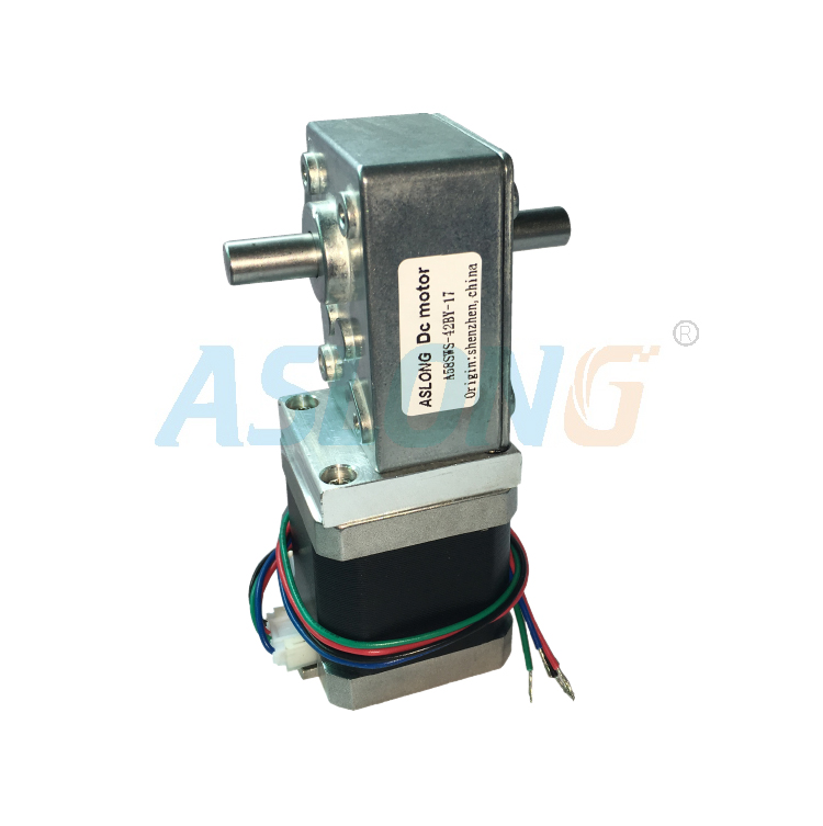 A58SW-42BYS Dual Shaft  Worm Gear Stepper Motor With Auto-lock