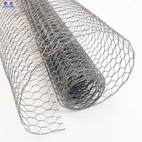 China Manufacturer lowes chicken wire mesh roll