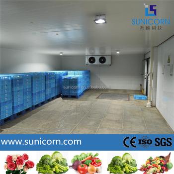 Wonderful Vegetable/fruit/cut Flower Cold Storage,CA Cold Room, CA Storage
