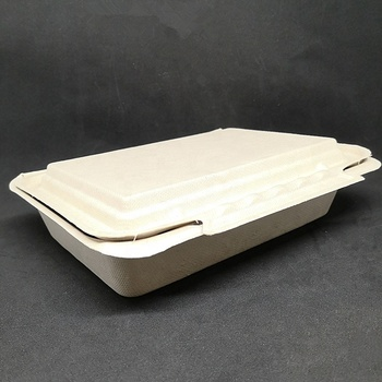 9*6 Inch Sugarcane Bagasse Disposable degradable Long Paper Clamshell Packaging Boxes