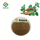 Kudzu Root Extract Puerarin Powder 40%