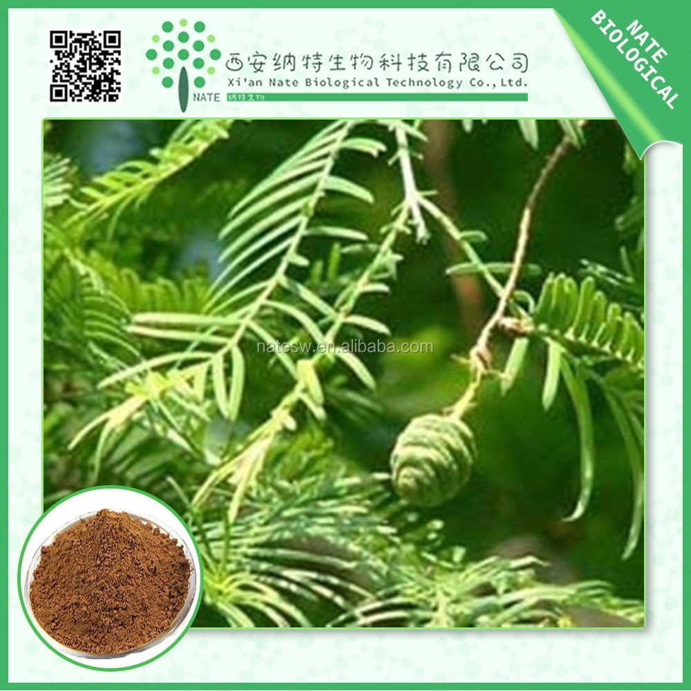 100% natural TRIBULUS ALATUS EXTRACT, TRIBULUS ALATUS POWDER saponins 40%,70%,80%,90% By Uv