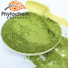 Organic Wheat Grass Juice Powder 5:1/10:1/25:1