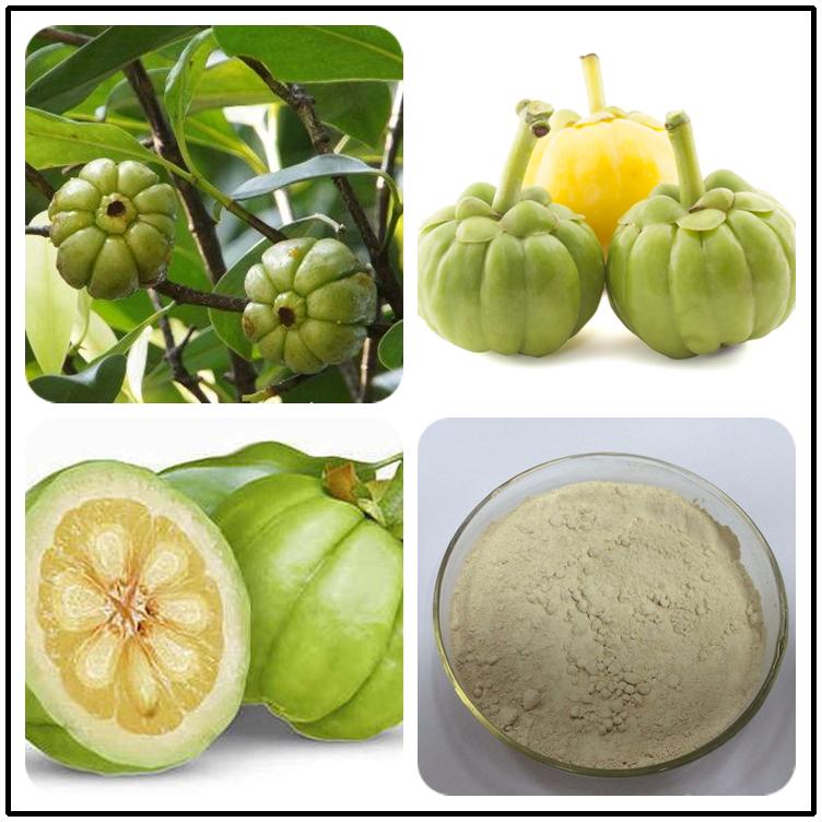 Pure Hydroxycitric Acid Fruit Plant Hca 60 Seeds Powder Nature
