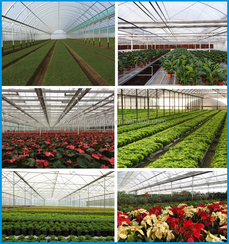 Hot sale Wide range multi span greenhouses for agriculture production