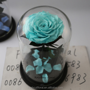Wholesale rose in glass dome preserved flower in glass jar from Kunming