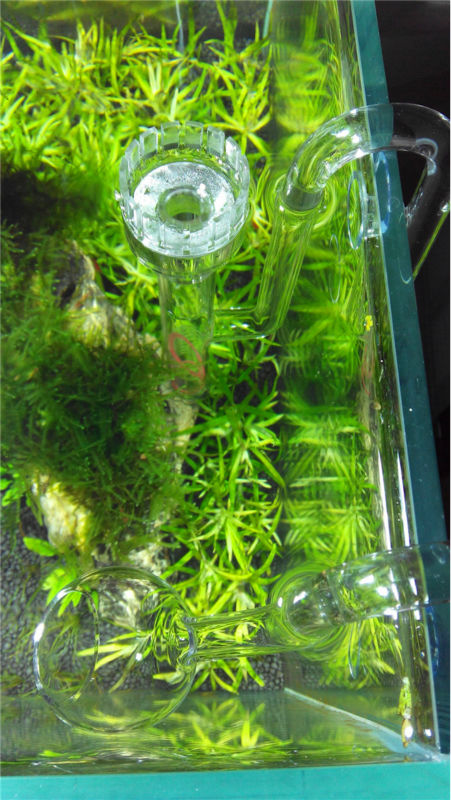 Wholesale Aquarium Plant Tank Oil Skimmer With Lily P