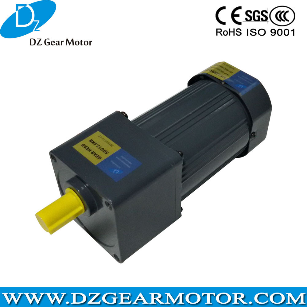 Three Phase High Torque Low Rpm 110v 220v Electric Motor