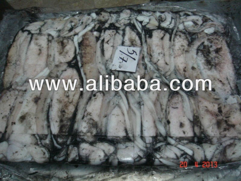 FROZEN CUTTLEFISH WHOLE