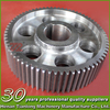 Machinery Differential Spur gear Parts