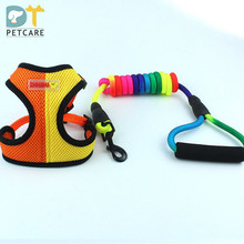 New Cat Dog Pet Harness Leash Chumbo Ajustável Colorido Colar