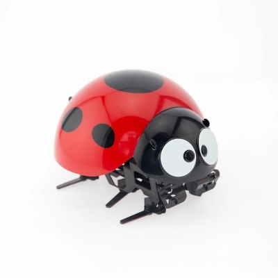 Katzen Haustierbedarf Remote Control Simulate Ladybug Electronic Toy DIY Children Gift Novelty Toy bm