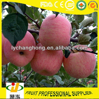 Fruits Containing Potassium For Apples - Buy Fruits Containing ...