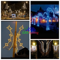 Led Festival Decorative Lights 2d Motif Pole Light Metal Made ...