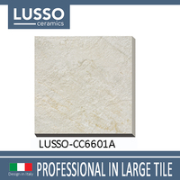 China supplier hot sale 20mm thickness heavy ceramic tile 600x600 strong porcelain floor tiles for decoration