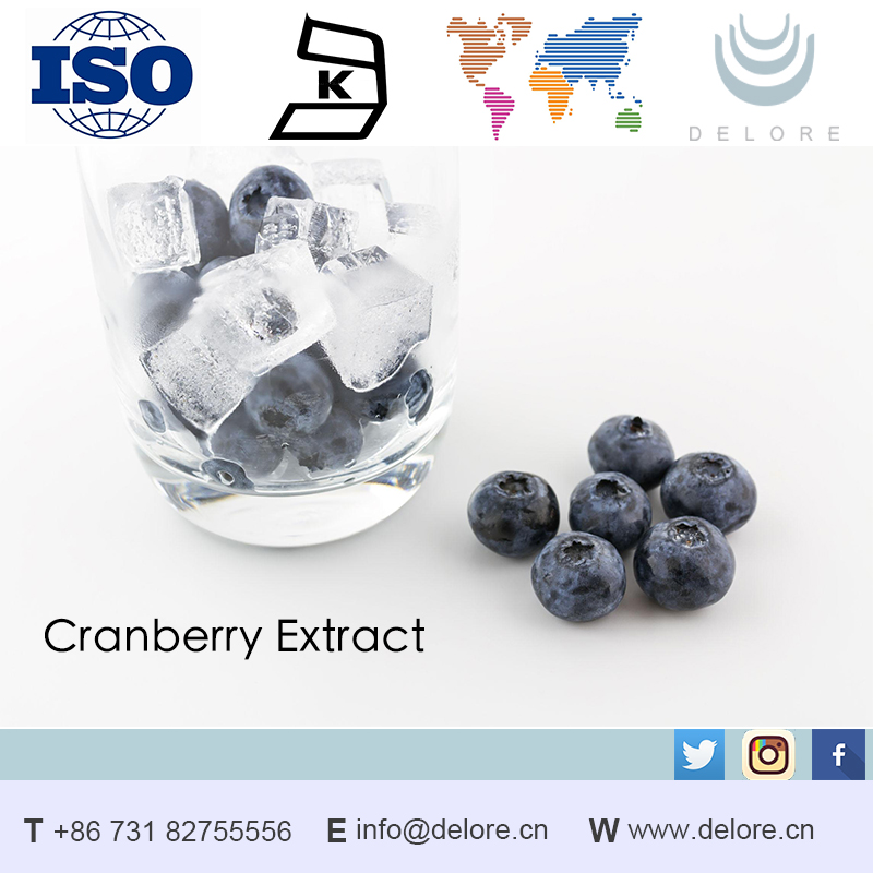 China manufacturer 100% natural blueberry extract organic/bilberry juice