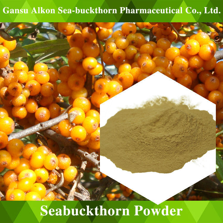 Seabuckthorn Fruit Powder Rich in vitamin nutritional nerve improve sleep quality