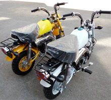 Monkey Motorcycle Dirt Bike 110cc Pit Bike