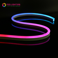 Silicone ip68 waterproof led color flex light strip 24V dmx neon rgb pixel
