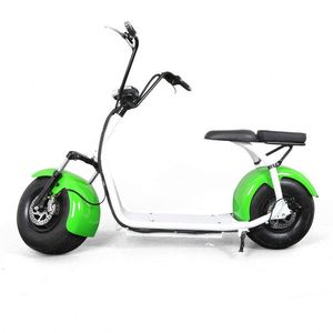 Hot Sell 2 Wheel Electric Scooter 48V300w Robstep Electric Bike